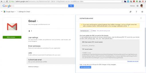 Gmail中DKIM设置界面