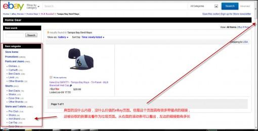 被熊猫4.0惩罚的eBay的页面