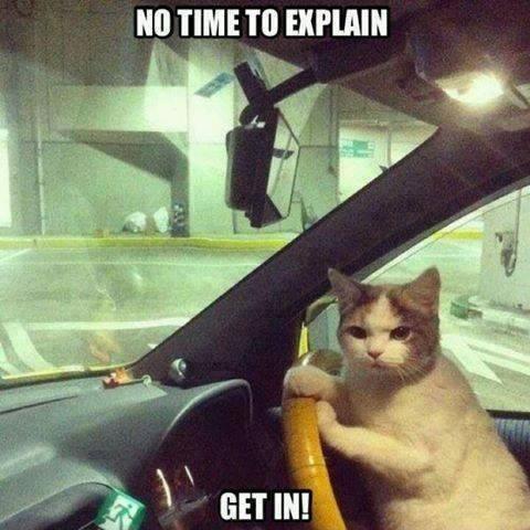 没时间解释了,快上车!